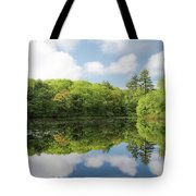 Reflecton On Tranquility Tote Bag