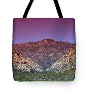 Regal Desert Tote Bag