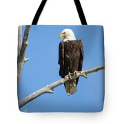 Regal Eagle Tote Bag