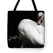 Regal Plumage Tote Bag