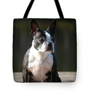 Regal  Tote Bag