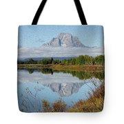 Regel Reflection Tote Bag