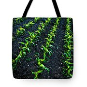 Regimented Corn Tote Bag