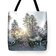 Reindeer On Autumn Sun Tote Bag