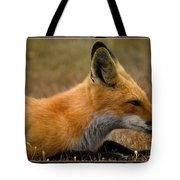 Relax 2 Tote Bag