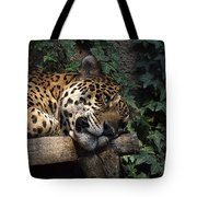 Relaxing Tote Bag by Ernie Echols