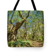 Relaxing Planes Trees Arbor Tote Bag