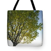 Relaxing Under A Tree Tote Bag