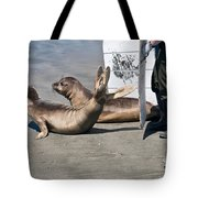 Releasing Elephant Seals Tote Bag