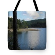 Relecting Afternoon Tote Bag