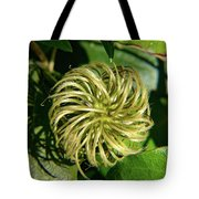 Remainder Of A Clematis Blossom Tote Bag