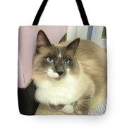 Blue-eyed Boy Tote Bag