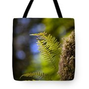Renewal Ferns Tote Bag by Mike Reid