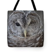 Rescue Owl Tote Bag