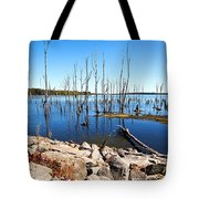 Reservoir Tote Bag