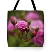 Resplendent Roses Tote Bag