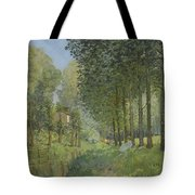 Rest Along The Stream - Edge Of The Wood Tote Bag