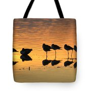 Rest At The End Of A Day Tote Bag