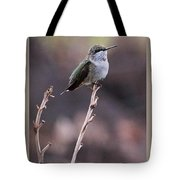 Restful Pose Tote Bag
