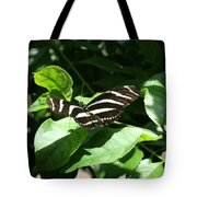 Resting - Black And White Butterfly Tote Bag