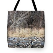Resting Canadian Geese Tote Bag