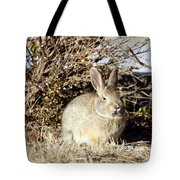 Resting Cottontail Tote Bag