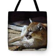 Resting Cougar Tote Bag