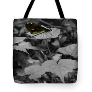 Resting Dragonfly Tote Bag
