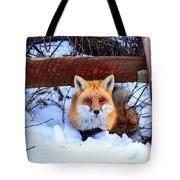 Resting Fox Tote Bag