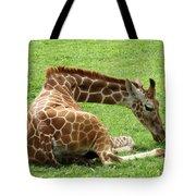 Resting Giraffe Tote Bag