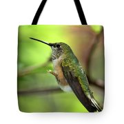 Resting Hummingbird Tote Bag