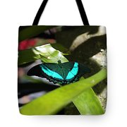 Resting In The Shadows Tote Bag