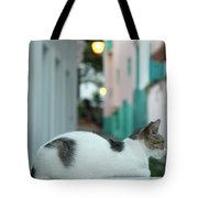 Resting Kitten  Tote Bag