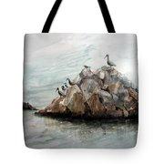Resting Place - Corona Del Mar Ca Tote Bag