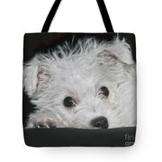 Resting Puppy Tote Bag