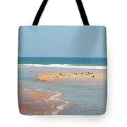 Resting Seagulls On A Sandbar Tote Bag