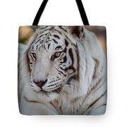 Resting Tiger Tote Bag