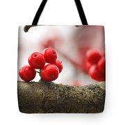 Resting Winter Berries  Tote Bag