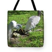 Resting Wood Stork And White Egret Tote Bag