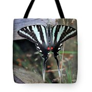 Resting Zebra Swallowtail Butterfly Tote Bag
