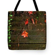 Retaining Wall In Autumn Tote Bag
