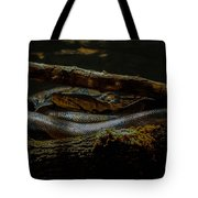 Reticulated Python Tote Bag