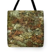 Reticulated Reflection Tote Bag
