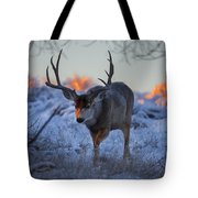 Retreat From The Sunrise Tote Bag