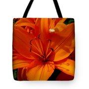 Retreating Orange Lilies Tote Bag