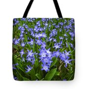 Return To The Meadow Tote Bag