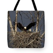 Returning Home To The Nest Tote Bag
