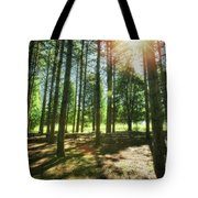 Retzer Nature Center Pine Trees Tote Bag