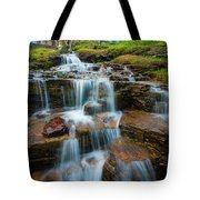 Reynolds Mountain Waterfall Tote Bag