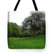 Rhineland-palatinate Summer Meadow Tote Bag